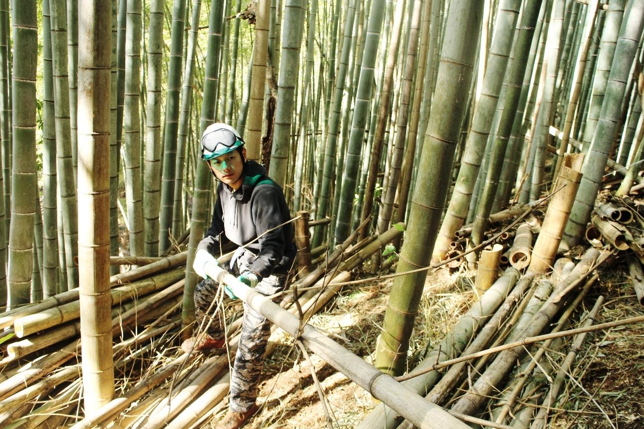 環境NPOと協力し荒れた竹林の間伐